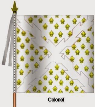 Bourgogne Infanterie Colonel Flag