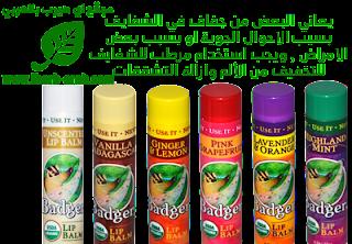 مرطب شفايف عديم الرائحة عضوي ومعتمد Badger Company, Organic Lip Balm, Unscented, .15 oz (4.2 g)