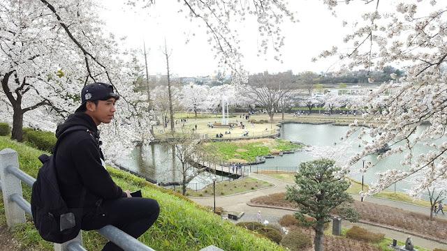Kegiatan Hanami di Musim Semi