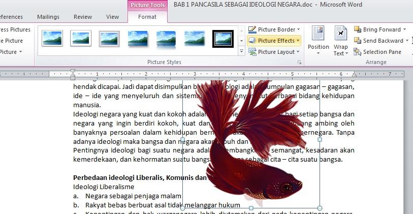 Membuat Warna Gambar Menjadi Transparan Di Ms Word Teknologi Informasi