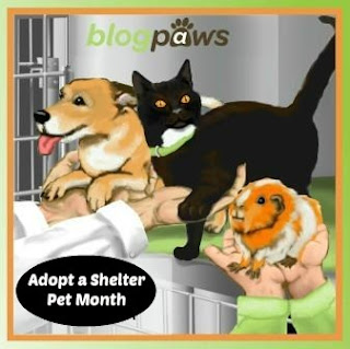 Badge with dog, cat and hamster for Adopt a Shelter Pet Month