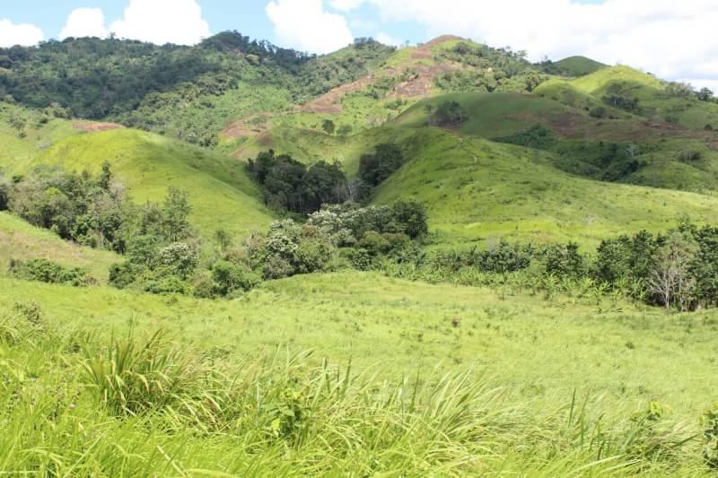Ekspedisi ken arok: Bukit Kudai Kalimantan Selatan