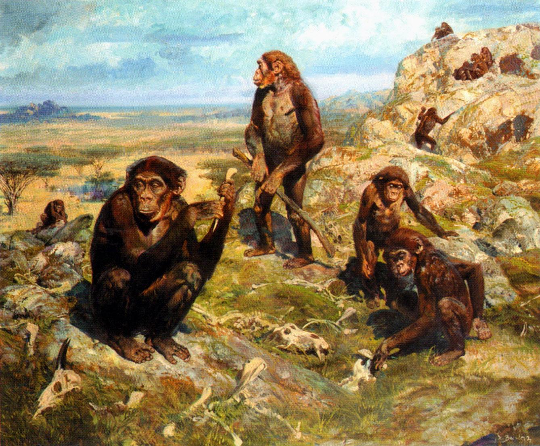 Zden K Burian Australopithecus Afric