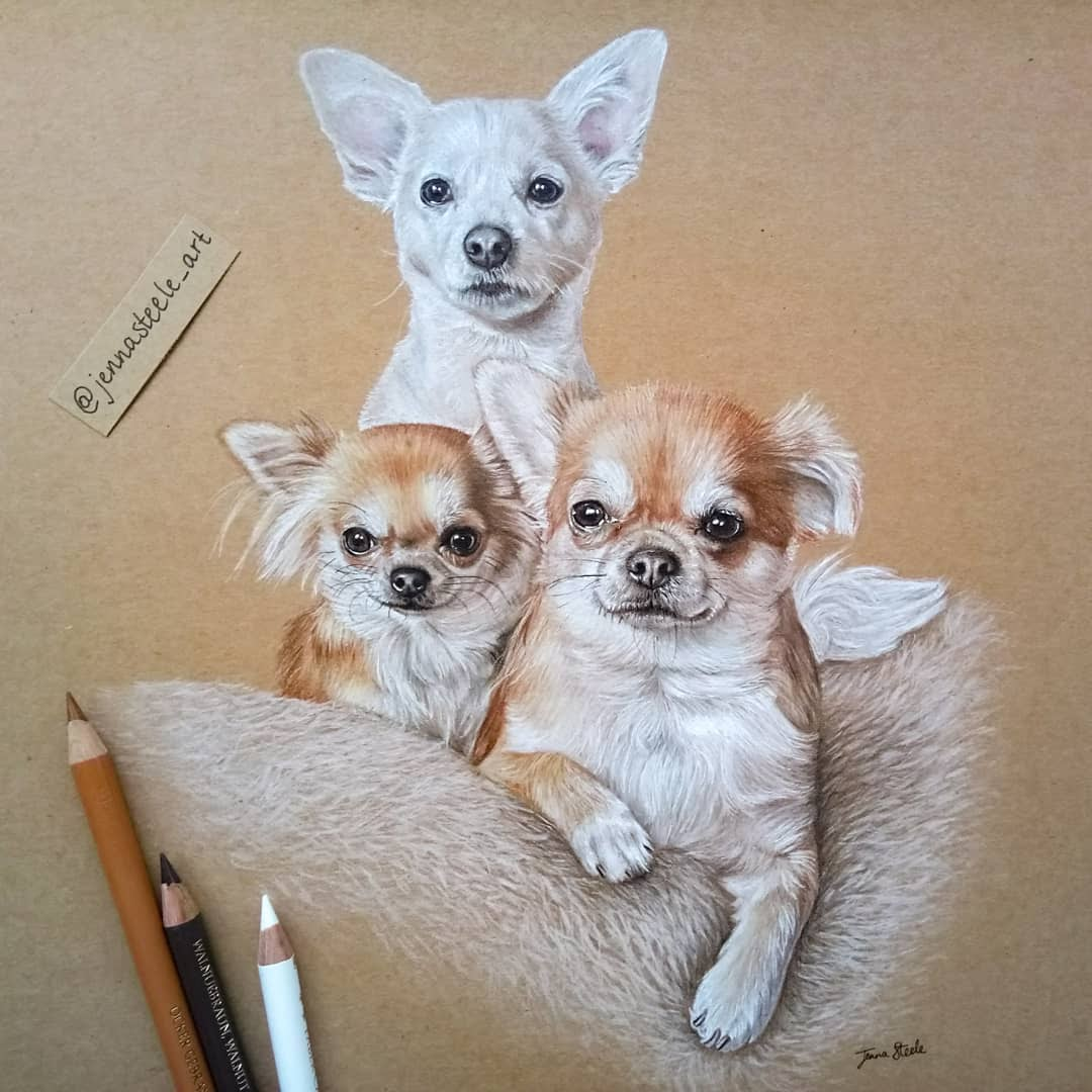 09-Pet-Portrait-Commission-Jenna-Steele-Collection-of-Pencil-Drawings-www-designstack-co