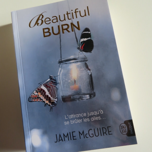 Les frères Maddox, tome 4 : Beautiful burn de Jamie McGuire