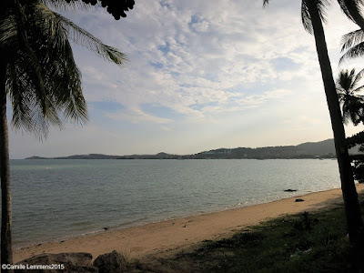 Koh Samui, Thailand daily weather update; 20th November, 2015