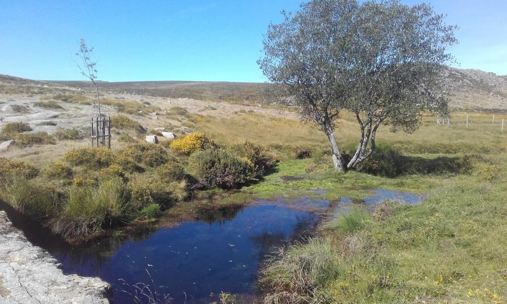 Poço de água junto ás pedras boroas