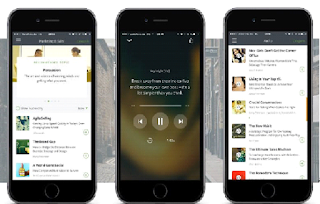 Blinkist a Productivity app for iOS