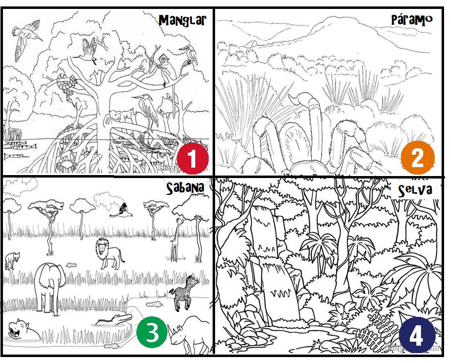 Fichas de primaria los tipos de paisajes - Tipos de paisajes ...