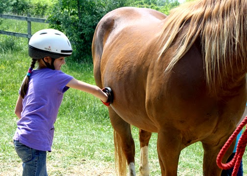 Tessa tested out various grooming brushes and techniques on the ever-patient Andy the horse. In addition to learning riding and grooming skills, she took a tour of the equestrian center's barn and hayloft. Pony Tales was fun, well done and a great confidence-booster.
