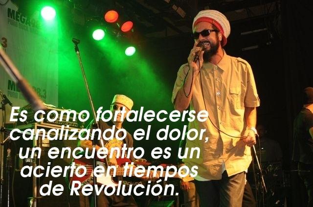 revolucion nonpalidece