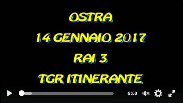 https://www.facebook.com/anna.franceschini.75/videos/1372440709474006/