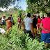 Corpo de adolescente é encontrado em matagal em São Miguel do Guamá
