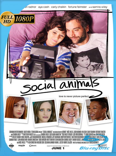 Social Animals (2018) HD [1080p] Latino [GoogleDrive] SilvestreHD