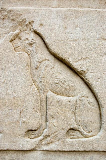 #AncientEgypt #catsinEgypt