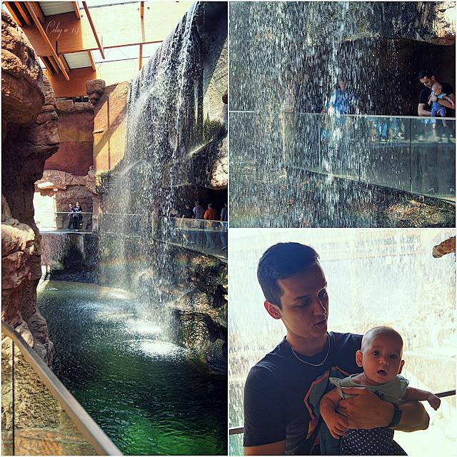 Kolaż zdjęć z wodospadem [Weronika i Marcin]