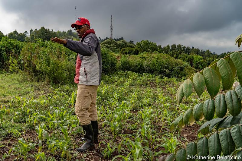 Kelvin on the Farm Volunteering in Kenya with Freedom Global