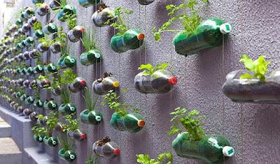 10 Desain Terbaru Taman Gantung Untuk Rumah Minimalis Dengan Konsep Alami 4