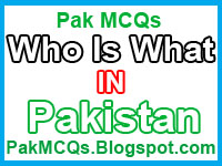 who is who in pakistan , who is what in pakistan , pakistan national assembly members , pakistan ministers , pakistan officers , pakistan police officer , pakistan affairs , pakistan members , Pakistan national , senate of pakistan , assembly of paksitan