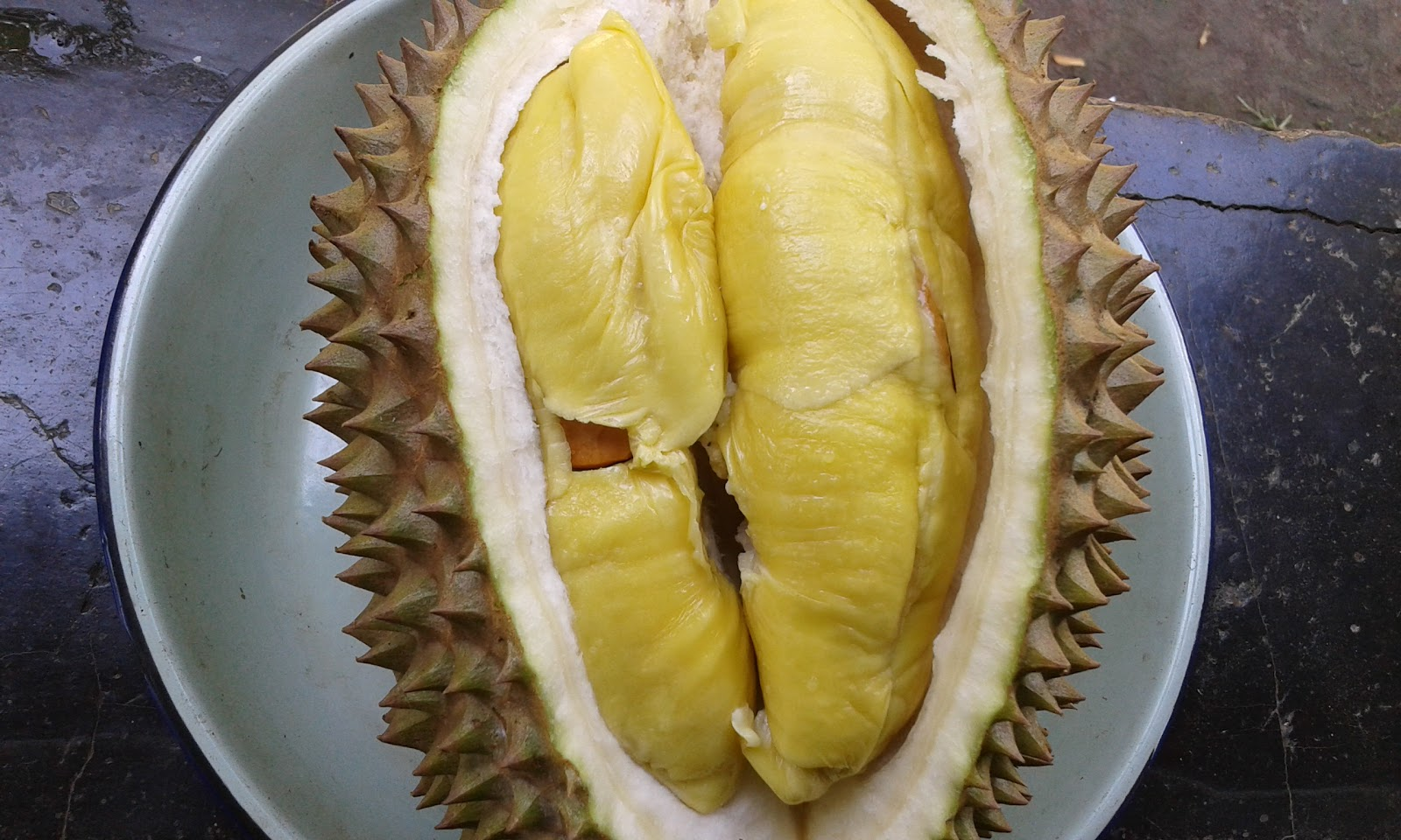 Durian Liftoff