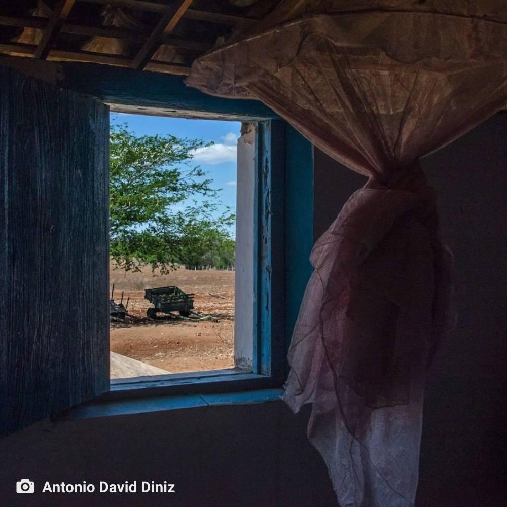 ambiente de leitura carlos romero josinaldo malaquias forca da imagem poesia fotografia antonio davd diniz gonzaga rodrigues
