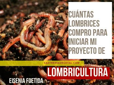 Comprar Lombriz Roja para proyecto de Lombricultura en España