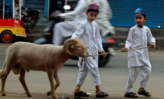 Tidak Sah Qurban dengan Iuaran Siswa di Sekolah