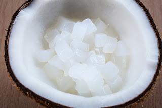 bakteri yang berperan dalam pembuatan nata de coco