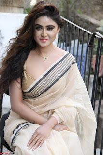 Sony Charishta in Brown saree Cute Beauty   IMG 3618 1600x1067.JPG