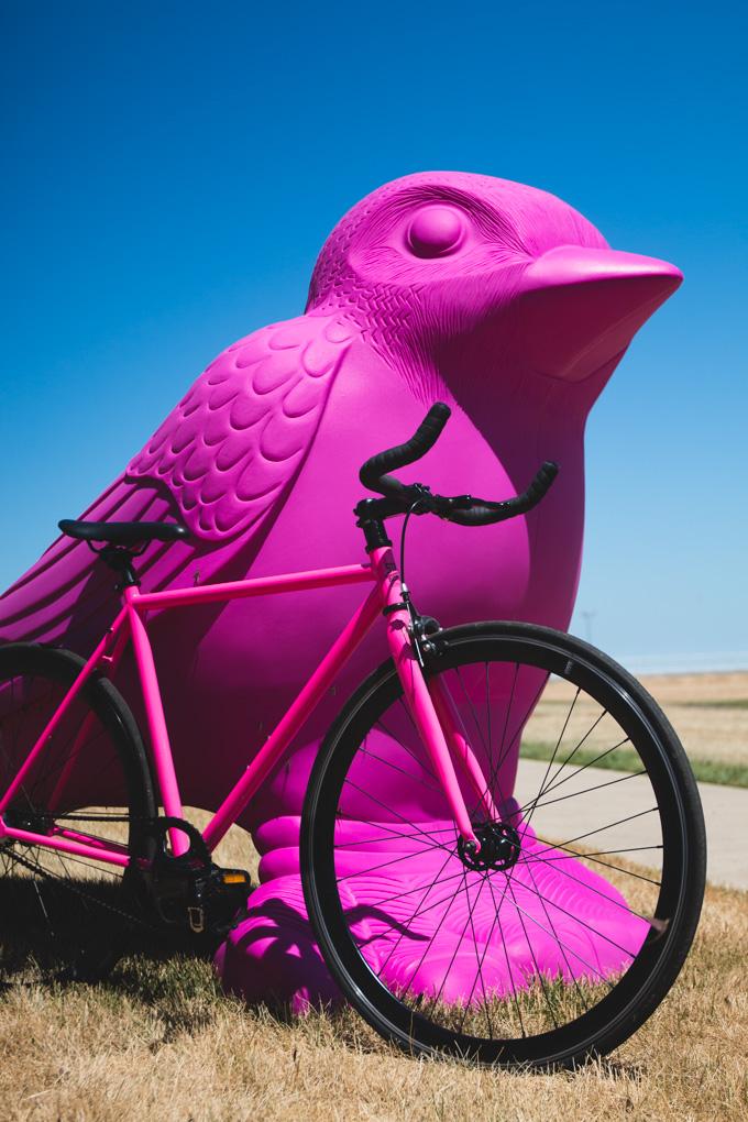 cleveland, ohio, land studio, bicycle