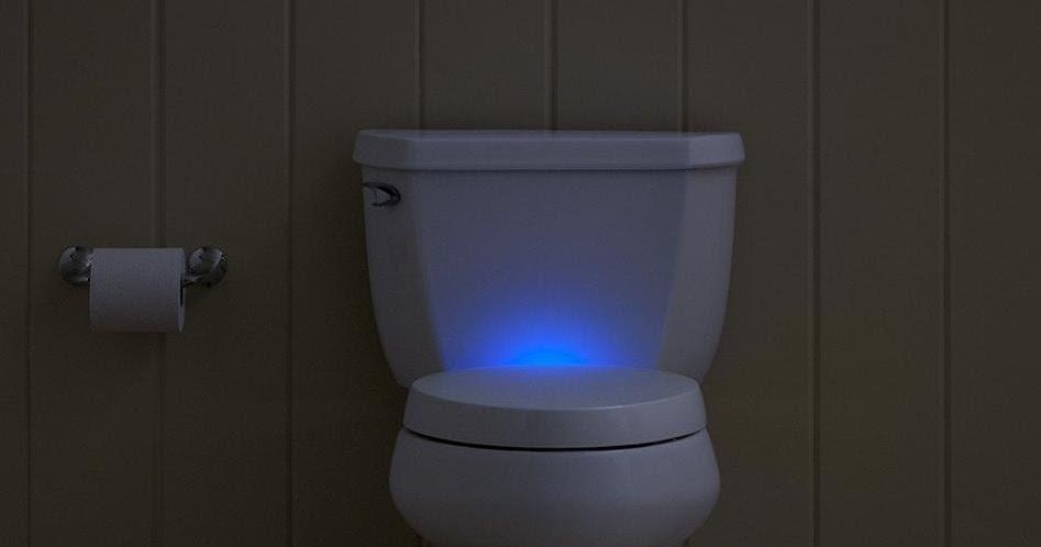 15 Coolest Toilet Seats