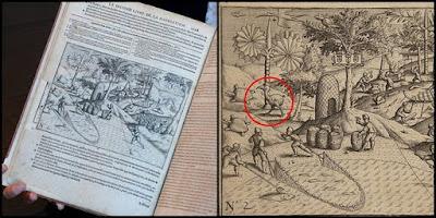 asal muasal sejarah burung dodo dari buku sejarah