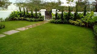 Tukang taman di Bsd City,Tukang taman murah di Bsd City,Jasa Renovasi Taman di Bsd City,Jasa perawatan taman di Bsd City,Jasa pembuatan taman di Bsd City