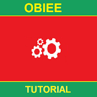 [Apps] OBIEE Tutorial