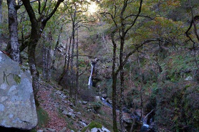 Cascada  Picón -  Ruta del Silencio - Asturias