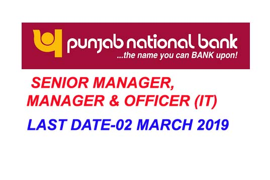PUNJAB NATIONAL BANK recruitment 2019 online senior manager