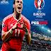 تحميل كتاب لعبة UEFA Euro 2016 France PDF