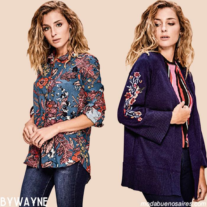 Camisas y túnicas otoño invierno 2019. Moda mujer invierno 2019.