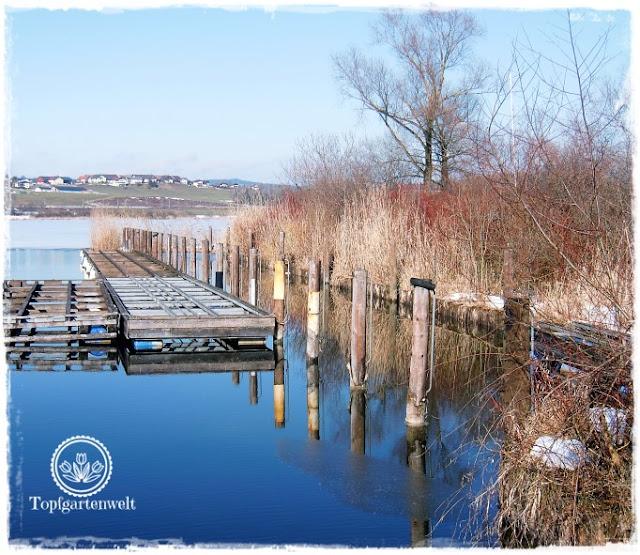 Gartenblog Topfgartenwelt Wallersee: Spiegelungen am Bootsplatz Kapeller
