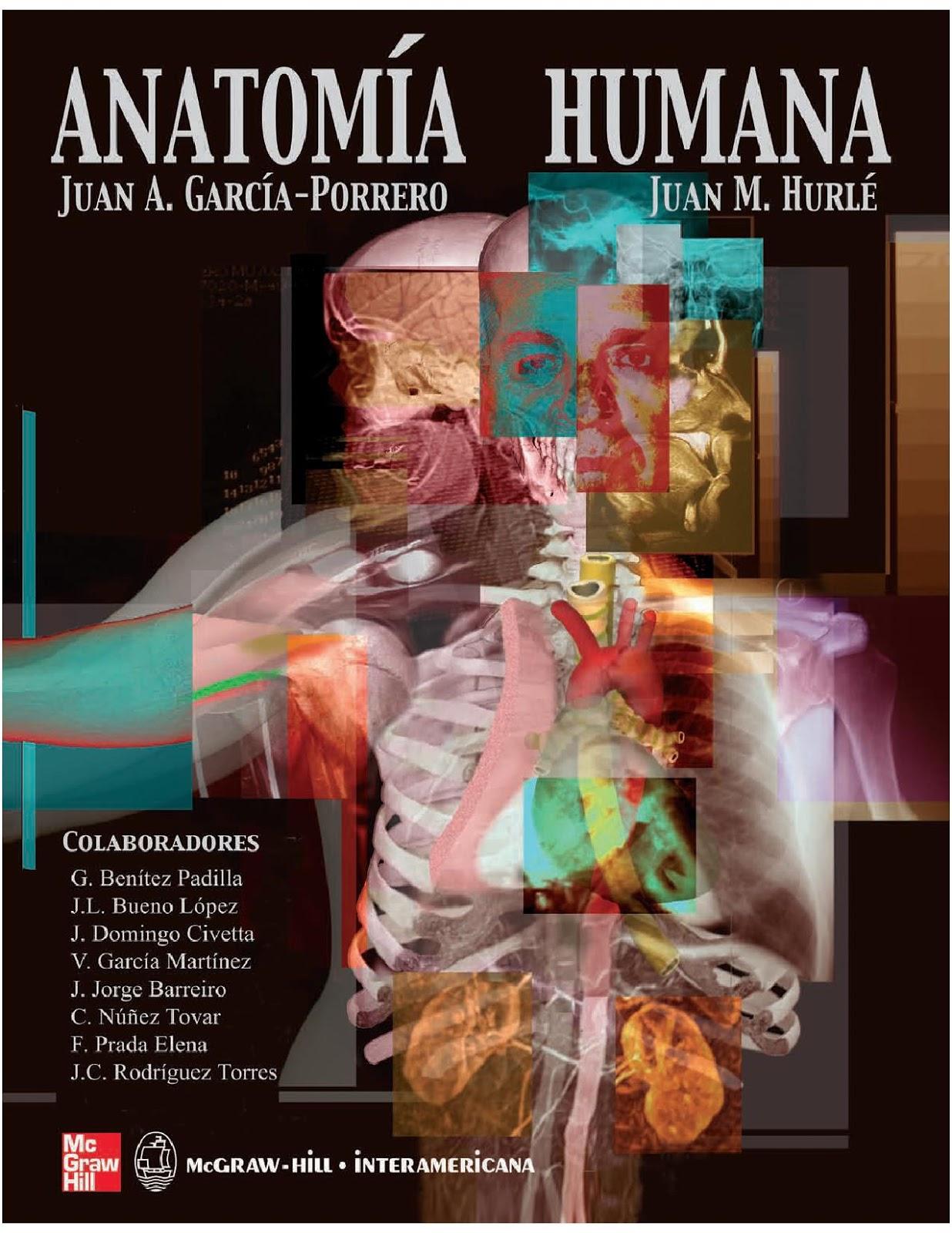 Contemporáneo Anatomía Y Fisiología Humana 10ª Edición Marieb Fotos ...