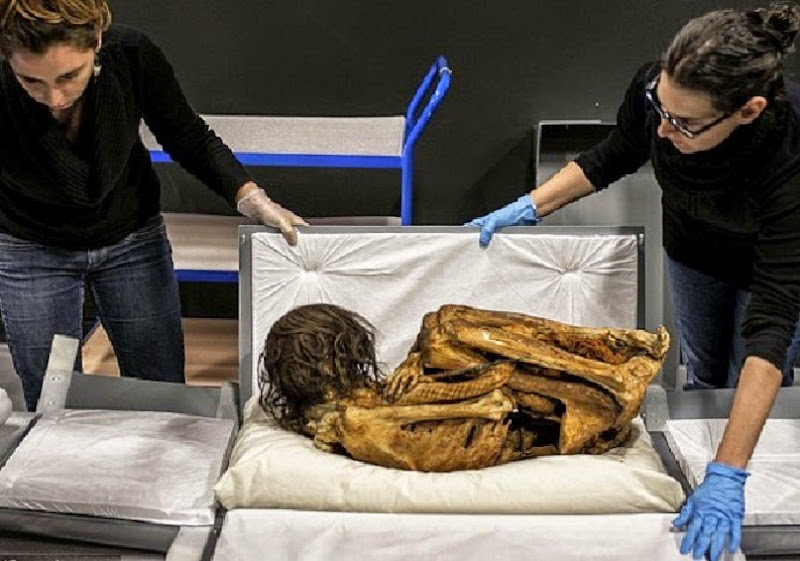 Peruvian mummy prepared for French exhibition after excavation in 2012