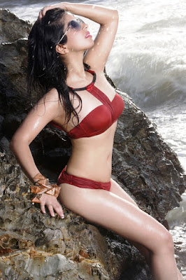 sheena-lakhani-bollywood-debut