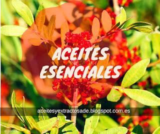 Aceites Esenciales y Extractos Naturales