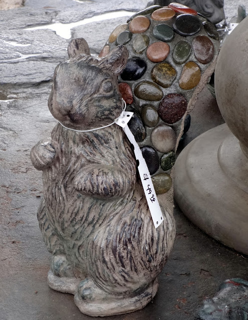 stone squirrel
