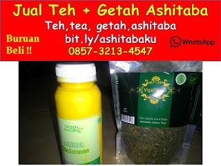 0857-3213-4547 Cara Mengkonsumsi Daun Ashitaba dan Getah Ashitaba