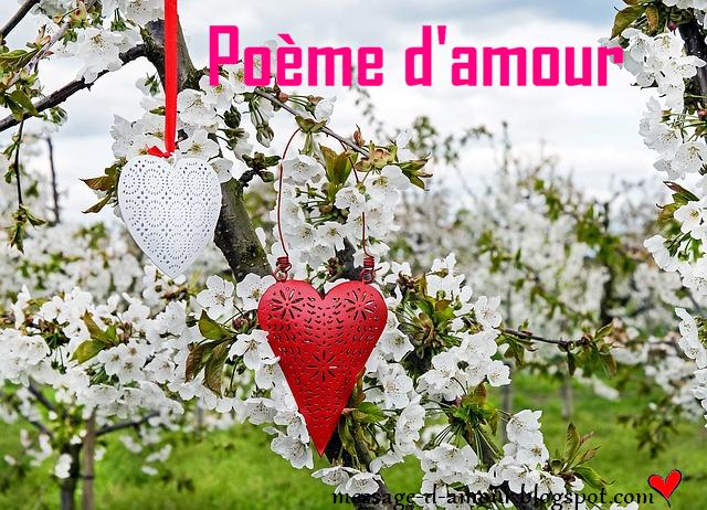 Des Poèmes Damour Message Damour
