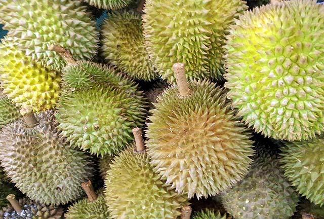 Tahukah Kamu, Mengapa Buah Durian Berbau Tajam?