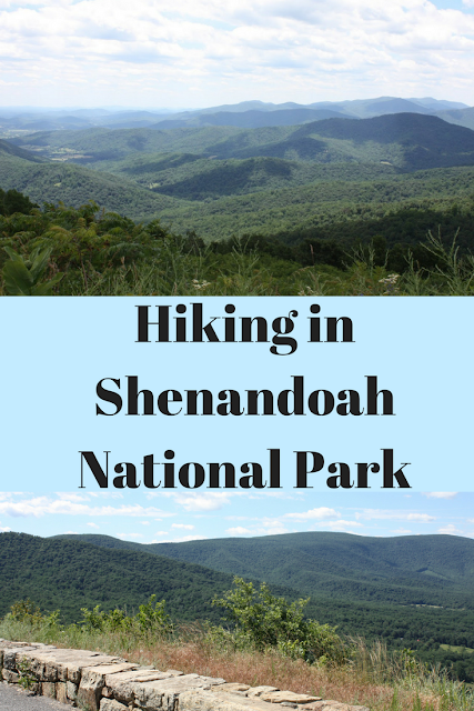 Hiking in  Shenandoah  National Park