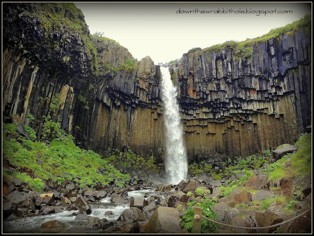 Svartifoss waterfall Skaftafell National Park Iceland