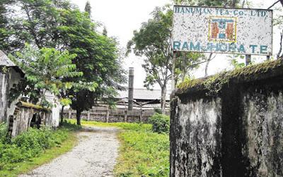 Ramjhora Tea Estate in dooars